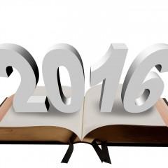 Sprawozdanie z działalności na rzecz SOŁECTWA NIEMSTÓW za rok 2016